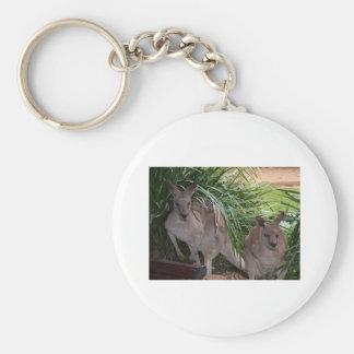 Canguro gris del este australiano llavero personalizado
