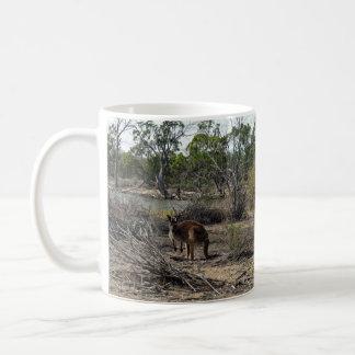 Canguro, _In_Outback, _Australia, Taza Clásica
