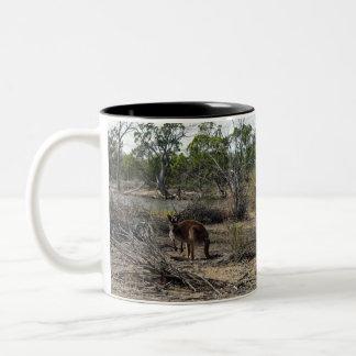 Canguro, _In_Outback_Australia_Two_Tone_Coffee_Mug Taza De Dos Tonos