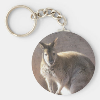 canguro llavero redondo tipo pin