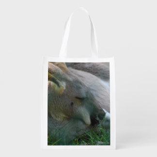 Canguro que se relaja bolsas para la compra