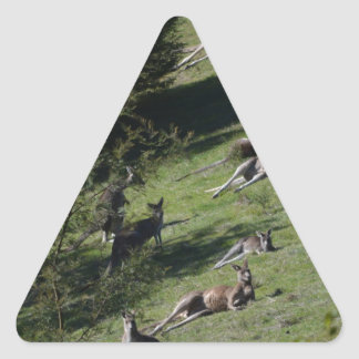 canguros calcomanías triangulos