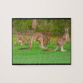 canguros puzzle con fotos