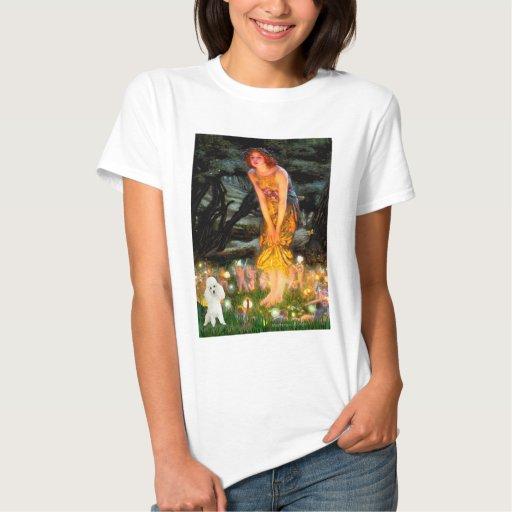 Caniche (14W) - MidEve Camisetas