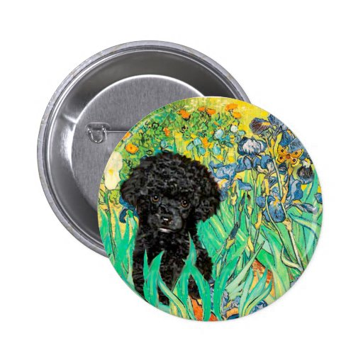 Caniche (B3) - iris Pin Redondo 5 Cm