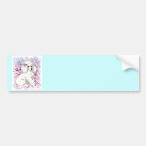Caniche blanco en el arte y los regalos de las lil pegatina de parachoque