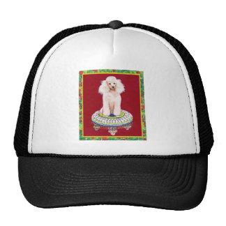 Caniche blanco en saludos del navidad del taburete gorras de camionero