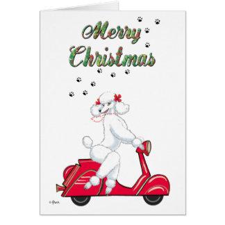 Caniche blanco en tarjetas rojas de las Felices Na