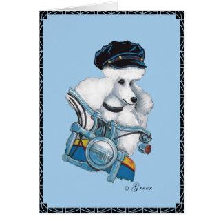 Caniche blanco en una tarjeta de felicitación de l