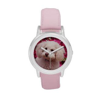 Caniche bonito relojes de pulsera