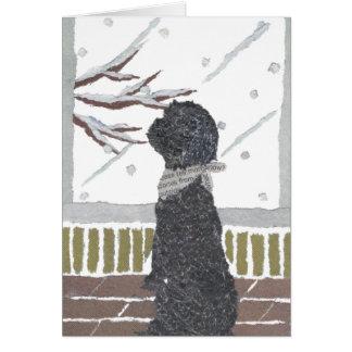 Caniche, caniche negro tarjeta de felicitación