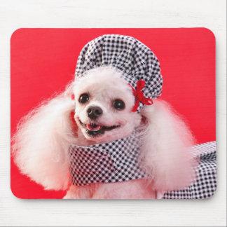 Caniche de juguete en gorra y vestido tapetes de ratón