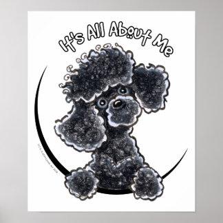 Caniche de juguete negro IAAM Poster