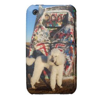 Caniche en el caso del iPhone del rancho de Funda Para iPhone 3 De Case-Mate
