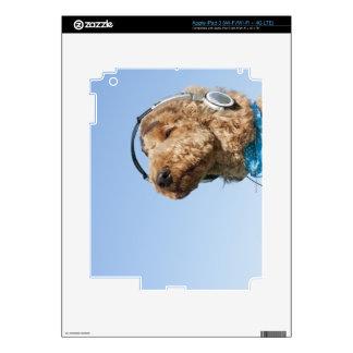Caniche estándar iPad 3 skins
