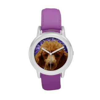 Caniche lindo relojes