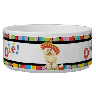 Caniche miniatura de la fiesta bol para perro
