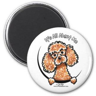 Caniche miniatura IAAM del juguete del albaricoque Imán Redondo 5 Cm