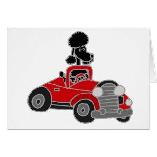 Caniche negro que conduce el coche convertible roj tarjeta