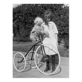 Caniche Perch, 1913 Tarjeta Postal