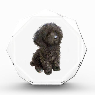 Caniche - perrito negro del juguete