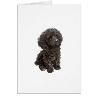 Caniche - perrito negro del juguete felicitacion