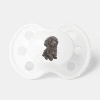 Caniche - perrito negro del juguete chupetes de bebe