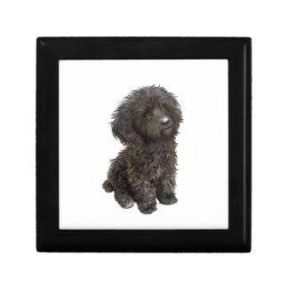 Caniche - perrito negro del juguete caja de recuerdo