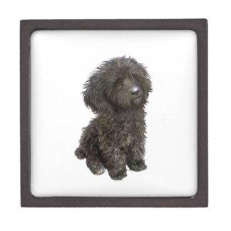 Caniche - perrito negro del juguete caja de joyas de calidad