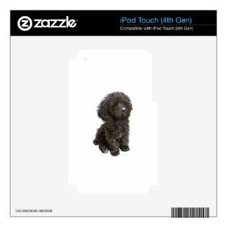 Caniche - perrito negro del juguete calcomanía para iPod touch 4G