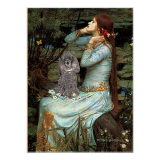 Caniche plata 8 - Ofelia asentada Poster