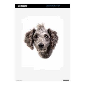 caniche punky gris calcomanías para el iPad 2
