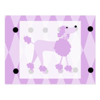 Caniche púrpura tarjetas postales