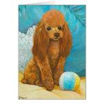 Caniche rojo del albaricoque con la bola tarjeta de felicitación