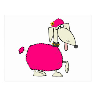 Caniche rosado tarjetas postales