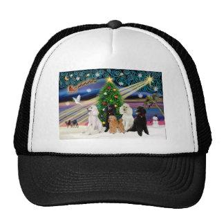 Caniches mágicos del navidad - estándar (5) gorras de camionero