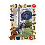 Canine Cafe Postcards