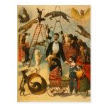 Canine Circus - Postcard #1