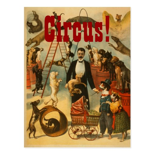 Canine Circus - Postcard #2