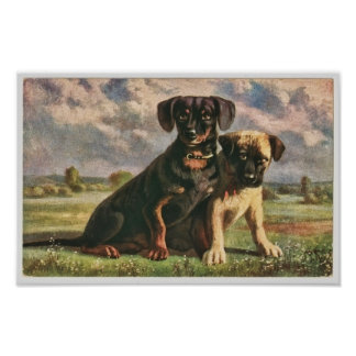 Canine Friends Poster