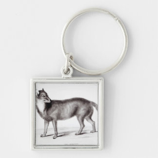 Canis Antarcticus Silver-Colored Square Keychain