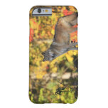 Canis lupus.order del lobo gris: carnivorafamily funda para iPhone 6 barely there