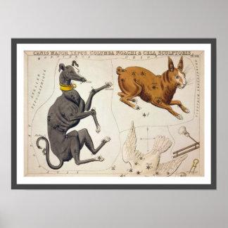 Canis Major, Lepus, Columba Noachi and Cela Poster