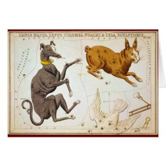 Canis Major, Lepus, Columba Noachi & Cela Sculptor Greeting Card