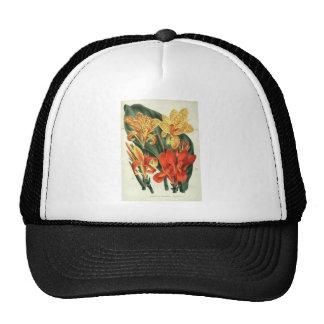 Canna Hybrids - Botanical Art Mesh Hats