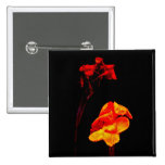 Canna Lilies on Black Pinback Buttons