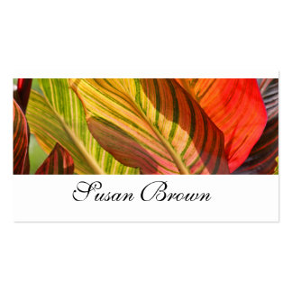 Canna Lilly Leaves - Business Card