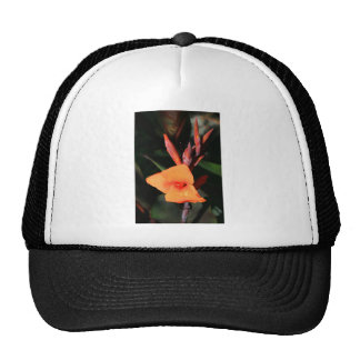 Canna Lily Flower cap Hat