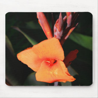Canna Lily Flower mousepad