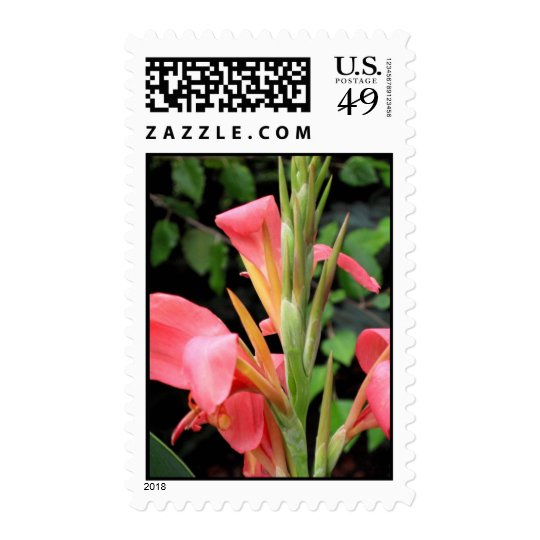 Canna Lily Postage